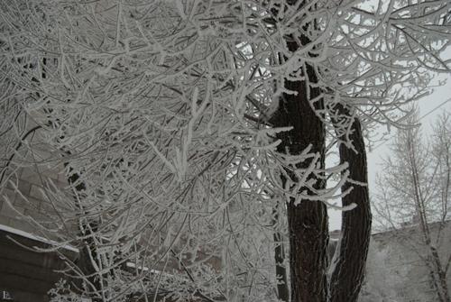Игорь Куберский. Зимние картинки